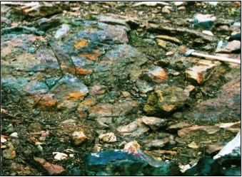 Both nickel rich and copper rich mineralization can be observed in outcrop